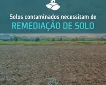 remediação de solo