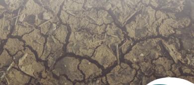 classificação de solos