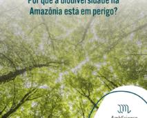 biodiversidade da amazônia